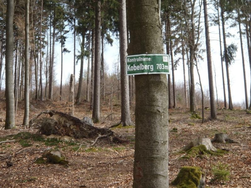 MTB_BüscherlKobel_ 040419_17