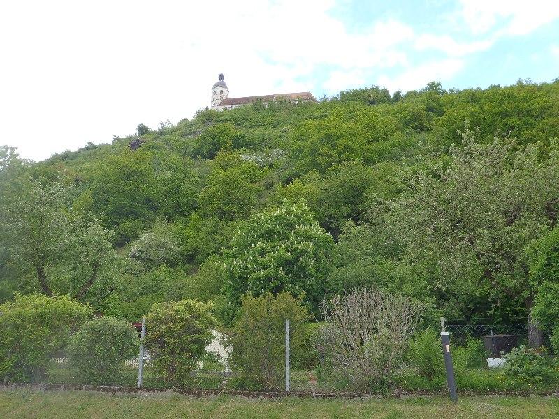 Der Bogenberg von unten