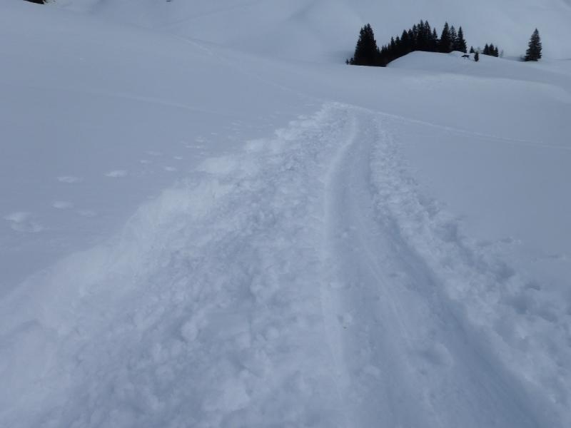 Unsere Spuren, brav neben der Skispur