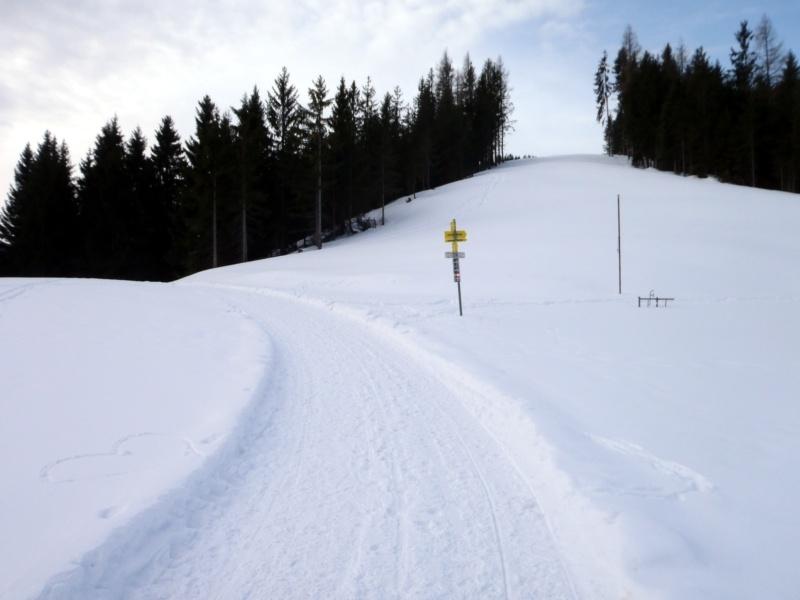 SST Wandberg 26.01.2020