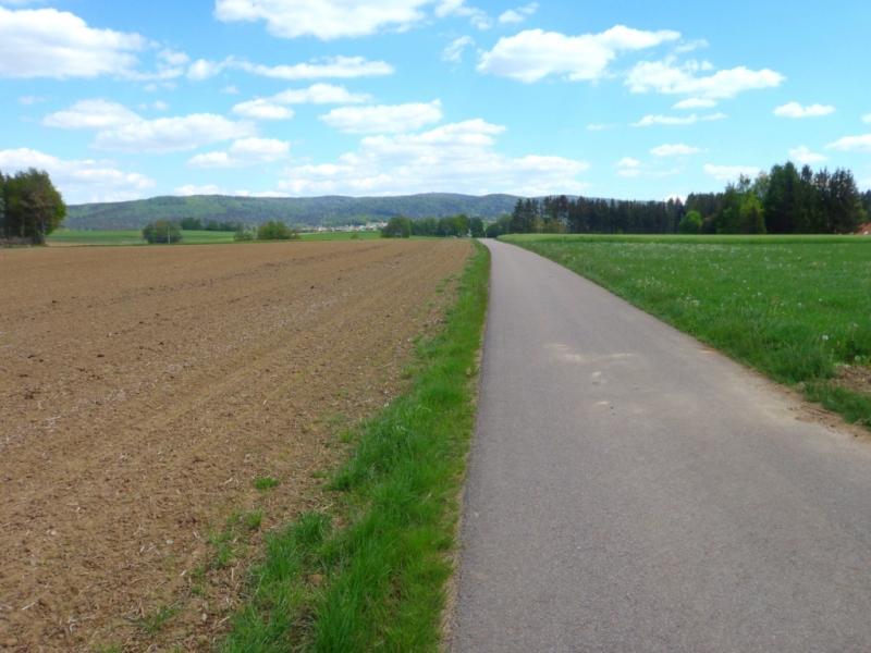 TRK_Wüm-T8-LKR_Cham-34_400_170520_001