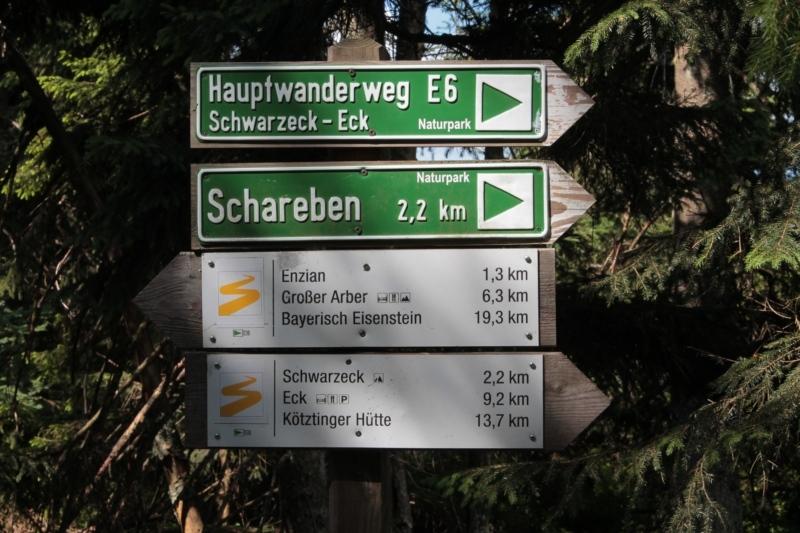 WT-Schareben-Enzian-080719_05